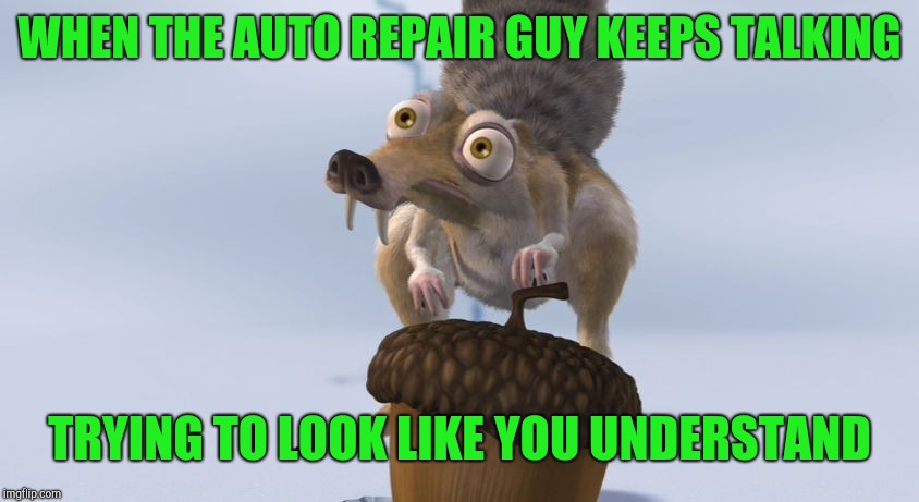 At the auto shop | WHEN THE AUTO REPAIR GUY KEEPS TALKING TRYING TO LOOK LIKE YOU UNDERSTAND | image tagged in scrat ice cracking,scrat,ice age | made w/ Imgflip meme maker