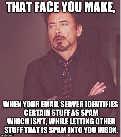 Face You Make Robert Downey Jr Meme | THAT FACE YOU MAKE, WHEN YOUR EMAIL SERVER IDENTIFIES CERTAIN STUFF AS SPAM WHICH ISN'T, WHILE LETTING OTHER STUFF THAT IS SPAM INTO YOU INB | image tagged in memes,face you make robert downey jr | made w/ Imgflip meme maker