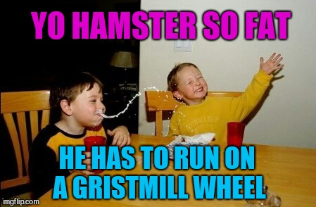 Hamster Weekend July 6-8, a bachmemeguy2, 1forpeace & Shen_Hiroku_Nagato event! | YO HAMSTER SO FAT HE HAS TO RUN ON A GRISTMILL WHEEL | image tagged in memes,yo mamas so fat,hamster weekend,jbmemegeek | made w/ Imgflip meme maker