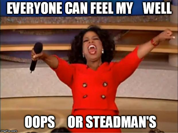 Oprah You Get A Meme | EVERYONE CAN FEEL MY    WELL OOPS     OR STEADMAN'S | image tagged in memes,oprah you get a | made w/ Imgflip meme maker