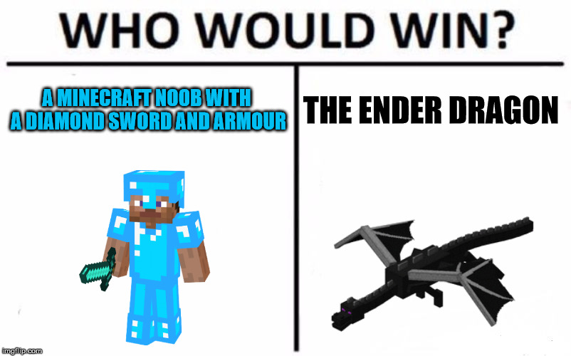 Who Would Win? Meme | A MINECRAFT NOOB WITH A DIAMOND SWORD AND ARMOUR THE ENDER DRAGON | image tagged in memes,who would win | made w/ Imgflip meme maker