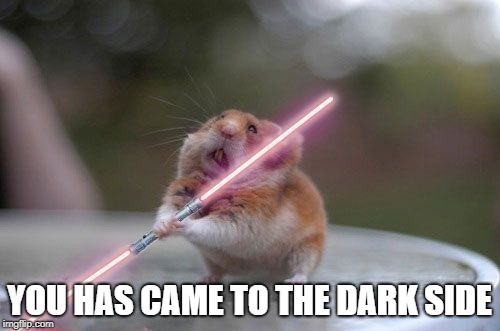 Star Wars hamster | YOU HAS CAME TO THE DARK SIDE | image tagged in star wars hamster | made w/ Imgflip meme maker