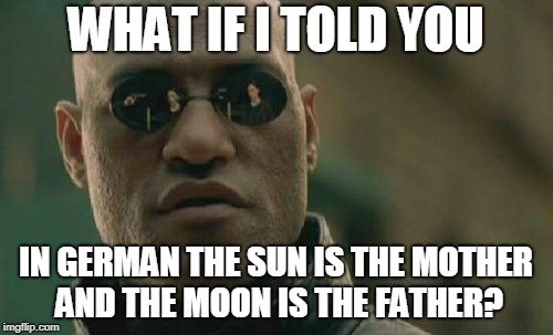 Matrix Morpheus Meme | WHAT IF I TOLD YOU IN GERMAN THE SUN IS THE MOTHER AND THE MOON IS THE FATHER? | image tagged in memes,matrix morpheus | made w/ Imgflip meme maker