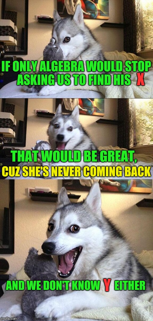 That Would Be Great Bad Pun Dog | IF ONLY ALGEBRA WOULD STOP ASKING US TO FIND HIS THAT WOULD BE GREAT, CUZ SHE'S NEVER COMING BACK AND WE DON'T KNOW       EITHER X Y | image tagged in memes,bad pun dog | made w/ Imgflip meme maker