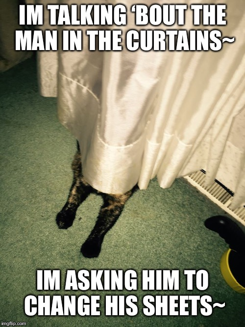 IM TALKING 'BOUT THE MAN IN THE CURTAINS~ IM ASKING HIM TO CHANGE HIS SHEETS~ | image tagged in man in the curtains | made w/ Imgflip meme maker