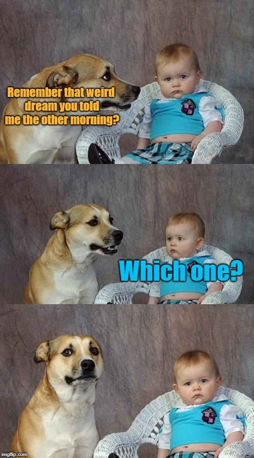Dad Joke Dog Meme | Remember that weird dream you told me the other morning? Which one? | image tagged in memes,dad joke dog | made w/ Imgflip meme maker
