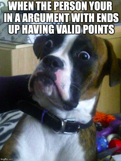 Suprised Boxer | WHEN THE PERSON YOUR IN A ARGUMENT WITH ENDS UP HAVING VALID POINTS | image tagged in suprised boxer | made w/ Imgflip meme maker
