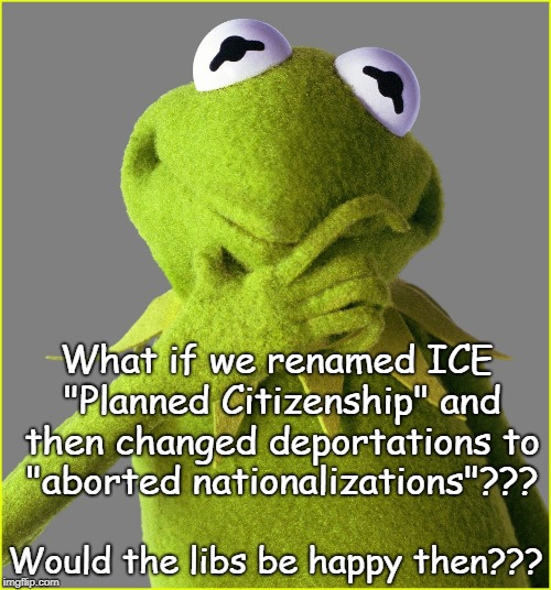 "What if??? | What if we renamed ICE ""Planned Citizenship"" and then changed deportations to ""aborted nationalizations""??? Would the libs be happy then??? 