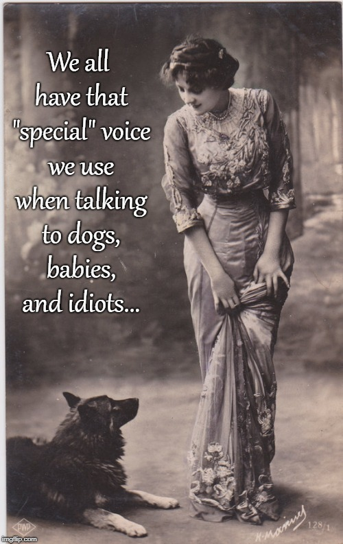 "Special voice... | We all have that ""special"" voice we use when talking to dogs, babies, and idiots... 