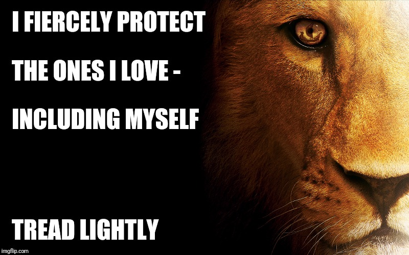 Enough | I FIERCELY PROTECT TREAD LIGHTLY THE ONES I LOVE - INCLUDING MYSELF | image tagged in lioness,protection,family | made w/ Imgflip meme maker