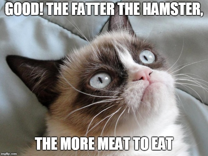GOOD! THE FATTER THE HAMSTER, THE MORE MEAT TO EAT | made w/ Imgflip meme maker