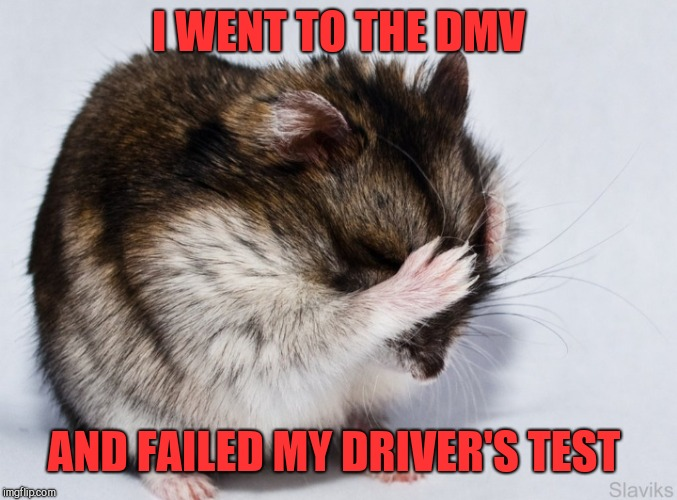 I WENT TO THE DMV AND FAILED MY DRIVER'S TEST | made w/ Imgflip meme maker