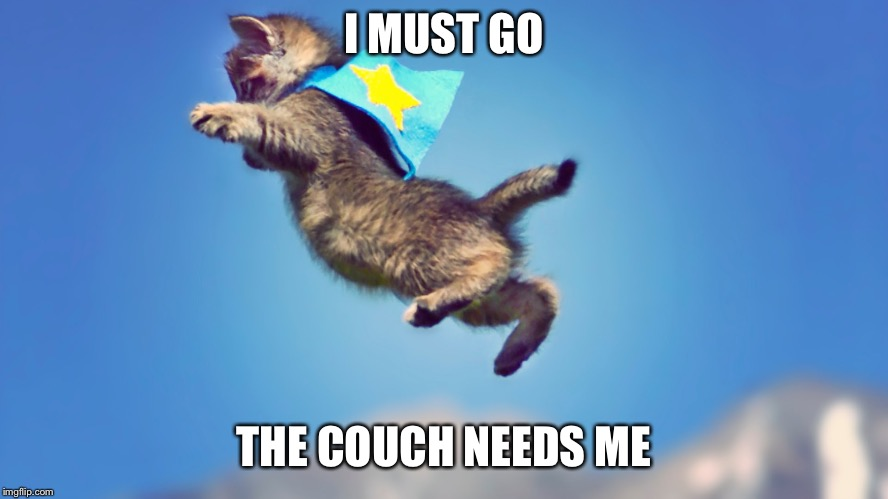I MUST GO THE COUCH NEEDS ME | image tagged in cats,flying | made w/ Imgflip meme maker