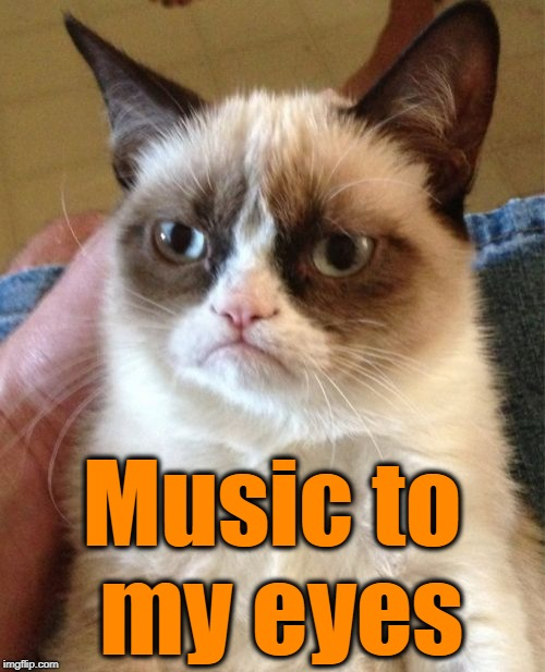 Grumpy Cat Meme | Music to my eyes | image tagged in memes,grumpy cat | made w/ Imgflip meme maker