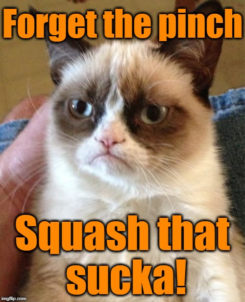 Grumpy Cat Meme | Forget the pinch Squash that sucka! | image tagged in memes,grumpy cat | made w/ Imgflip meme maker