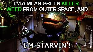 I'M A MEAN GREEN KILLER WEED FROM OUTER SPACE, AND KILLER WEED | made w/ Imgflip meme maker