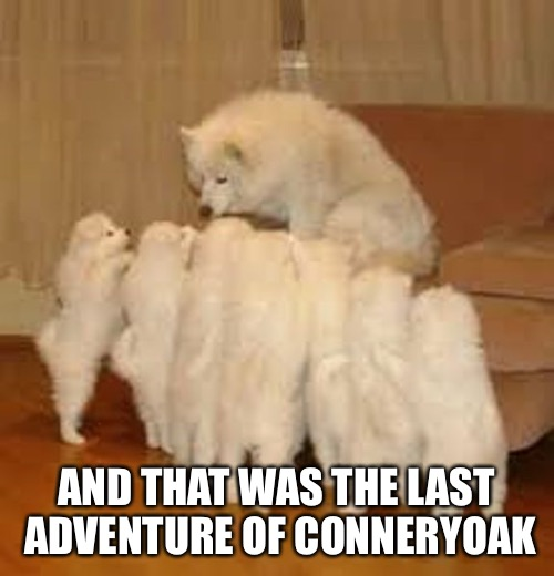 Storytelling Dog 2 | AND THAT WAS THE LAST ADVENTURE OF CONNERYOAK | image tagged in storytelling dog 2 | made w/ Imgflip meme maker