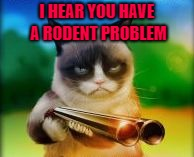 I HEAR YOU HAVE A RODENT PROBLEM | made w/ Imgflip meme maker