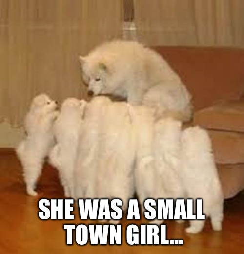 Storytelling Dog 2 | SHE WAS A SMALL TOWN GIRL... | image tagged in storytelling dog 2 | made w/ Imgflip meme maker