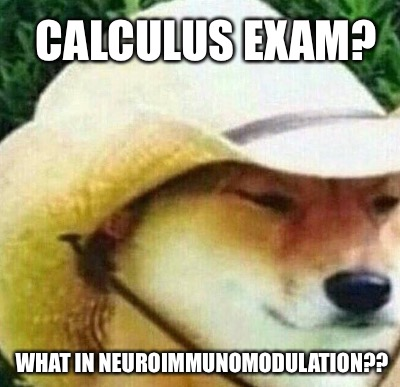CALCULUS EXAM? WHAT IN NEUROIMMUNOMODULATION?? | made w/ Imgflip meme maker