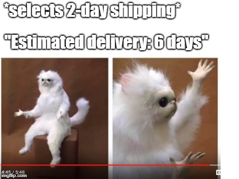 "Amazon in a nutshell | *selects 2-day shipping* ""Estimated delivery: 6 days"" 
