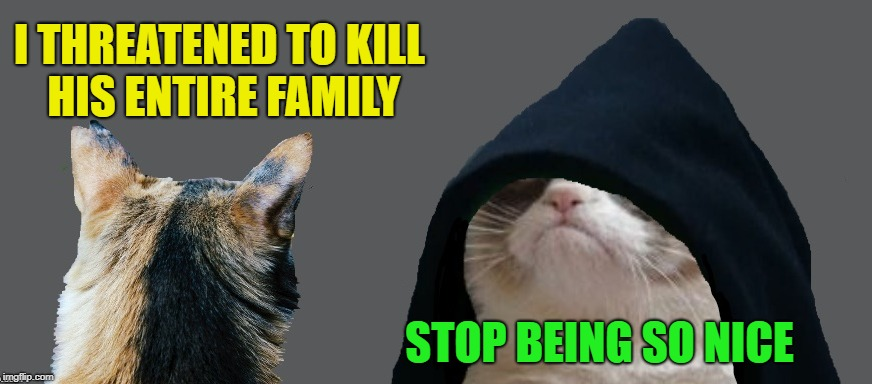 Evil Grump | I THREATENED TO KILL HIS ENTIRE FAMILY STOP BEING SO NICE | image tagged in funny memes,grumpy cat,evil kermit,caturday,cats | made w/ Imgflip meme maker