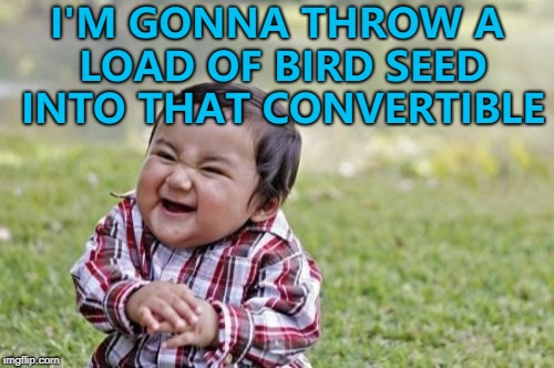 Just like an evil Mary Poppins... :) | I'M GONNA THROW A LOAD OF BIRD SEED INTO THAT CONVERTIBLE | image tagged in memes,evil toddler,convertible | made w/ Imgflip meme maker