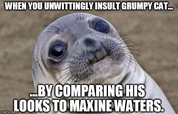 Awkward Moment Sealion Meme | WHEN YOU UNWITTINGLY INSULT GRUMPY CAT... ...BY COMPARING HIS LOOKS TO MAXINE WATERS. | image tagged in memes,awkward moment sealion | made w/ Imgflip meme maker