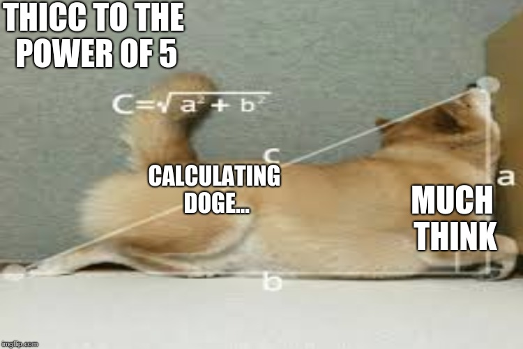 thiccccc | THICC TO THE POWER OF 5 CALCULATING DOGE... MUCH THINK | image tagged in doge,meme,dank,think | made w/ Imgflip meme maker
