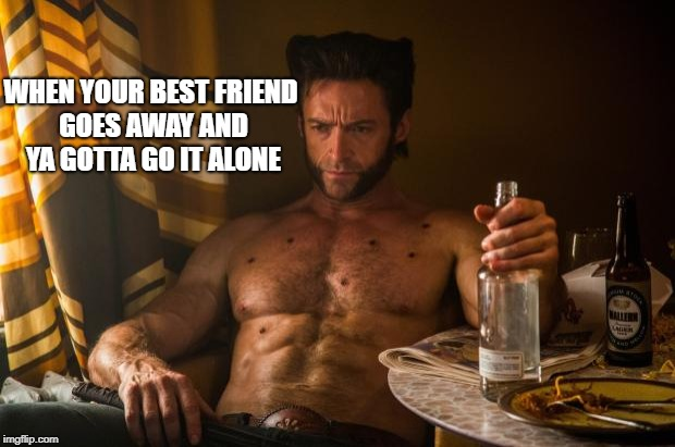 Wolverine depressed | WHEN YOUR BEST FRIEND GOES AWAY AND YA GOTTA GO IT ALONE | image tagged in wolverine depressed | made w/ Imgflip meme maker
