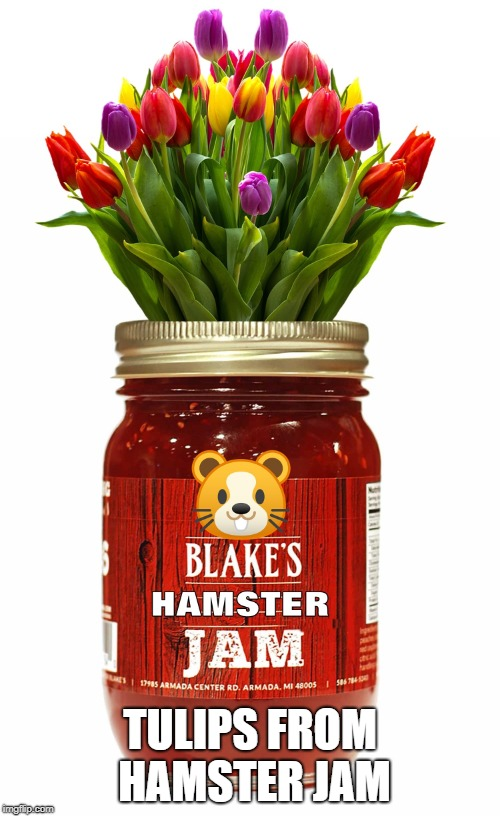 Hamster Weekend July 6-8, Tulips from Hamster Jam | TULIPS FROM HAMSTER JAM | image tagged in hamster,hamster weekend,memes | made w/ Imgflip meme maker