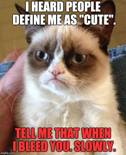 "Grumpy Cat Meme | I HEARD PEOPLE DEFINE ME AS ""CUTE"". TELL ME THAT WHEN I BLEED YOU. SLOWLY. 