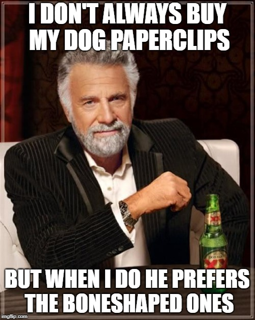 The Most Interesting Man In The World Meme | I DON'T ALWAYS BUY MY DOG PAPERCLIPS BUT WHEN I DO HE PREFERS THE BONESHAPED ONES | image tagged in memes,the most interesting man in the world | made w/ Imgflip meme maker