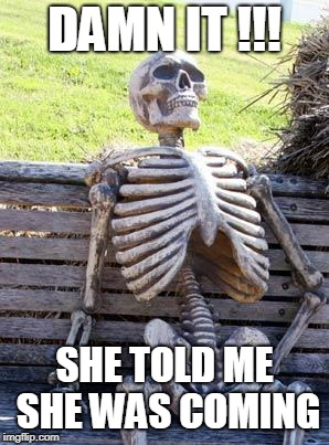 Waiting Skeleton Meme | DAMN IT !!! SHE TOLD ME SHE WAS COMING | image tagged in memes,waiting skeleton | made w/ Imgflip meme maker