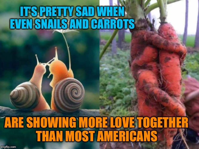 Pretty sad | IT'S PRETTY SAD WHEN EVEN SNAILS AND CARROTS ARE SHOWING MORE LOVE TOGETHER THAN MOST AMERICANS | image tagged in show,someone,love,americans,no more,hate | made w/ Imgflip meme maker