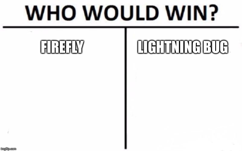 Who Would Win? Meme | FIREFLY LIGHTNING BUG | image tagged in memes,who would win | made w/ Imgflip meme maker