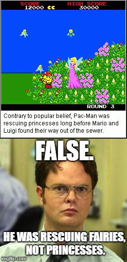 It's Very Obvious Too | FALSE. HE WAS RESCUING FAIRIES, NOT PRINCESSES. | image tagged in pac-man,false,gaming | made w/ Imgflip meme maker