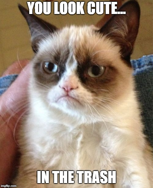 Grumpy Cat Meme | YOU LOOK CUTE... IN THE TRASH | image tagged in memes,grumpy cat | made w/ Imgflip meme maker
