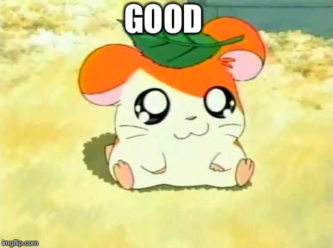 Hamtaro Meme | GOOD | image tagged in memes,hamtaro | made w/ Imgflip meme maker