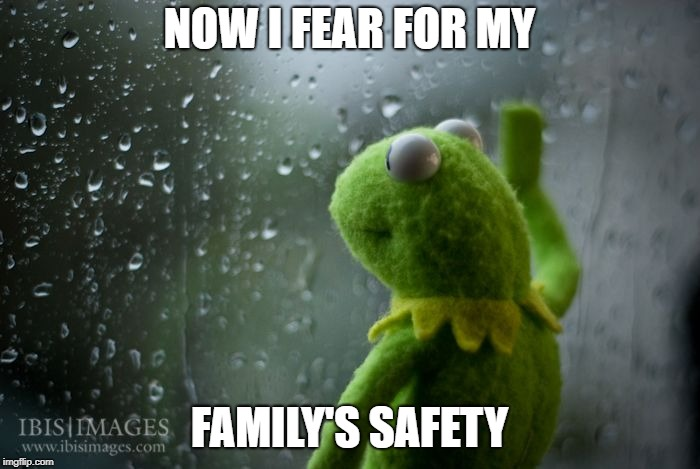 kermit window | NOW I FEAR FOR MY FAMILY'S SAFETY | image tagged in kermit window | made w/ Imgflip meme maker
