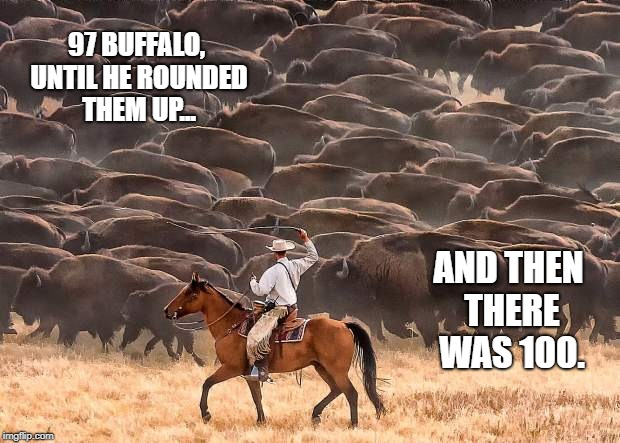 97 BUFFALO, UNTIL HE ROUNDED THEM UP... AND THEN THERE WAS 100. | image tagged in ya' herd | made w/ Imgflip meme maker