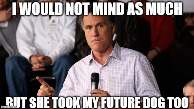 Mitt | I WOULD NOT MIND AS MUCH BUT SHE TOOK MY FUTURE DOG TOO | image tagged in mitt | made w/ Imgflip meme maker