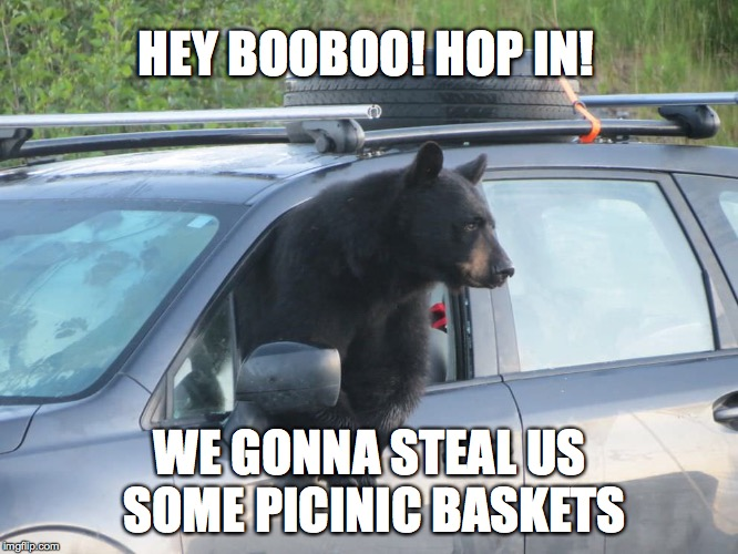 Alright Yogi... | HEY BOOBOO! HOP IN! WE GONNA STEAL US SOME PICINIC BASKETS | image tagged in yogi bear,bear at picnic table | made w/ Imgflip meme maker