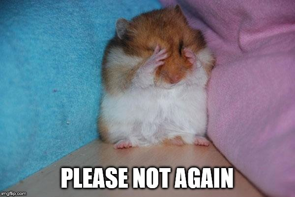 crying hamster | PLEASE NOT AGAIN | image tagged in crying hamster | made w/ Imgflip meme maker