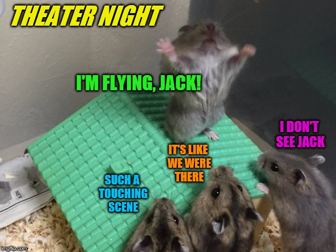 Titanic re-enactment - Hamster Weekend July 6-8, a bachmemeguy2, 1forpeace & Shen_Hiroku_Nagato event | I'M FLYING, JACK! SUCH A TOUCHING SCENE IT'S LIKE WE WERE THERE I DON'T SEE JACK THEATER NIGHT | image tagged in hamster king of the mountain,memes,titanic,theater,hamster weekend | made w/ Imgflip meme maker