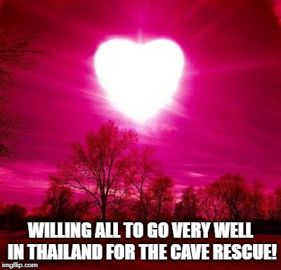 WILLING ALL TO GO VERY WELL IN THAILAND FOR THE CAVE RESCUE! | image tagged in thank you | made w/ Imgflip meme maker
