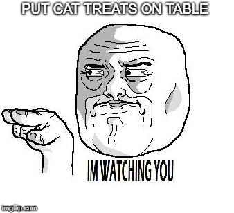 IM WATCHING YOU | PUT CAT TREATS ON TABLE | image tagged in im watching you | made w/ Imgflip meme maker