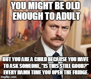 "Ron Swanson Meme | YOU MIGHT BE OLD ENOUGH TO ADULT BUT YOU ARE A CHILD BECAUSE YOU HAVE TO ASK SOMEONE, ""IS THIS STILL GOOD?"" EVERY DAMN TIME YOU OPEN THE FRI 