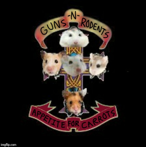 My hamster weekend submission... Might end up being on Monday because I had used my Sunday submissions already | . | image tagged in memes,hamster weekend,guns n roses | made w/ Imgflip meme maker