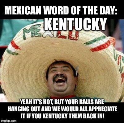 Mexican Word of the Day (LARGE) | KENTUCKY YEAH IT'S HOT, BUT YOUR BALLS ARE HANGING OUT AND WE WOULD ALL APPRECIATE IT IF YOU KENTUCKY THEM BACK IN! | image tagged in mexican word of the day large | made w/ Imgflip meme maker